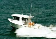Deap sea fishing trips